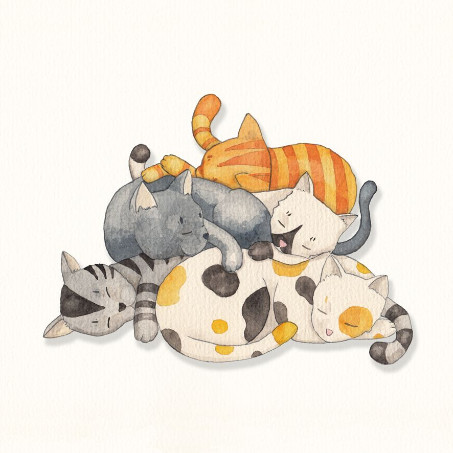 Cat nap watercolor by timone